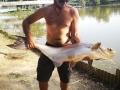 zamal_catfish_bosang
