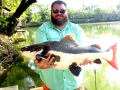 eric_duncan_redtail_catfish_big