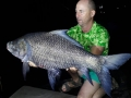 indian_carp_catla_dreamlake_chiang_mai
