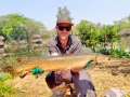 tobias_flori_alligator_gar_dreamlake_fishing_thailand