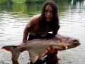giant_mekong_catfish_borsang_lake_1