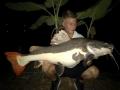 redtail_catfish_21