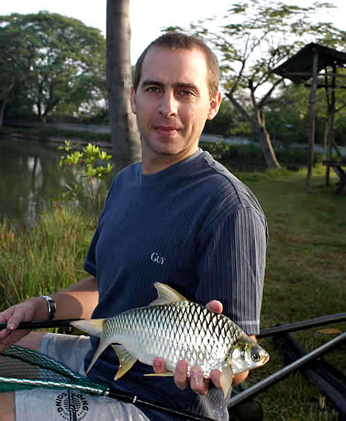Information on the Silver Java Barb for anglers fishing in Thailand