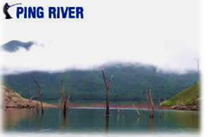 Dreamlake fishing adventure Chiang mai guided fishing trip to the Ping river national park.