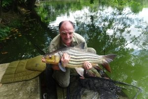 Catch report Oct 2019 – Steve (UK)