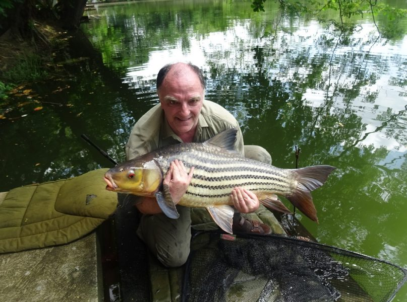 Steve Rare Julliens Golden Price Carp Dreamlake Fishing Resort Thailand
