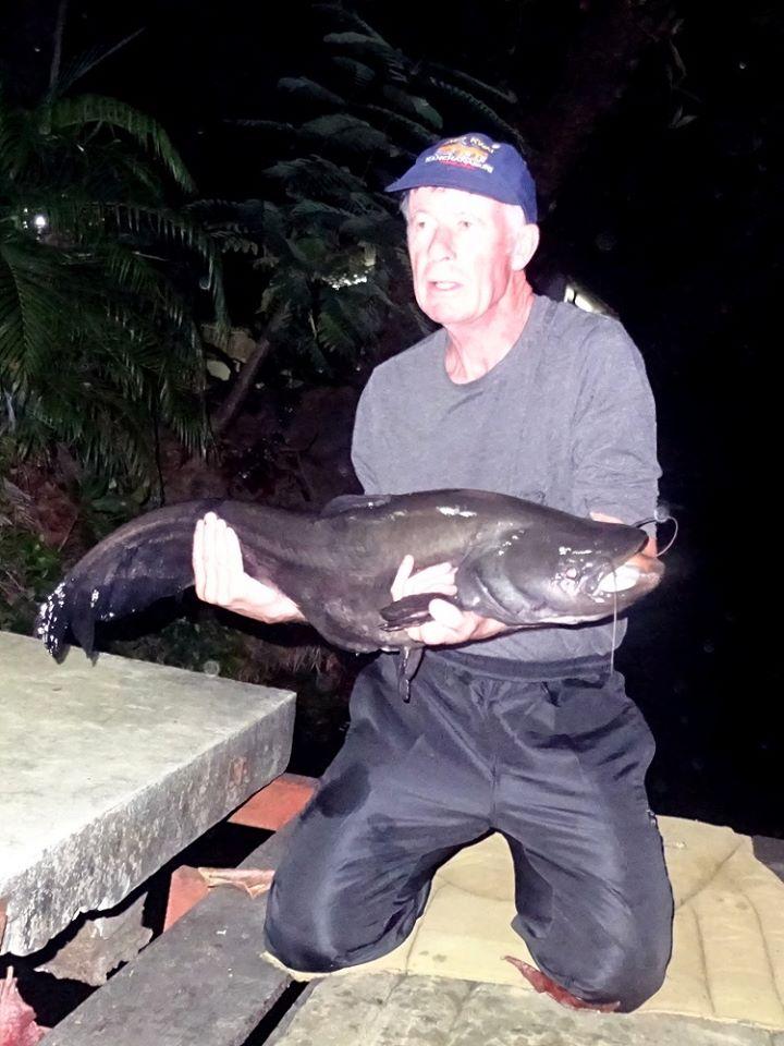 Wallago caught at Dreamlake fishing in Thailand