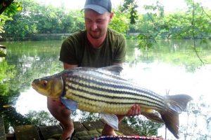 Auf Karpfen angeln am Dreamlake, Chiang Mai – Thailand